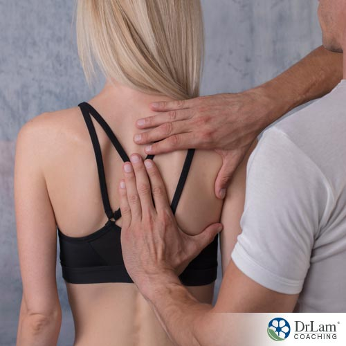 Chiropractic Adjustments: The Importance of Spinal Health