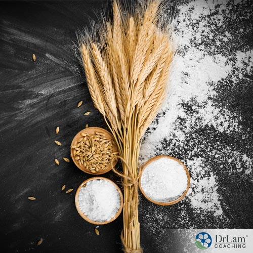 How wheat, gluten and brain health relate