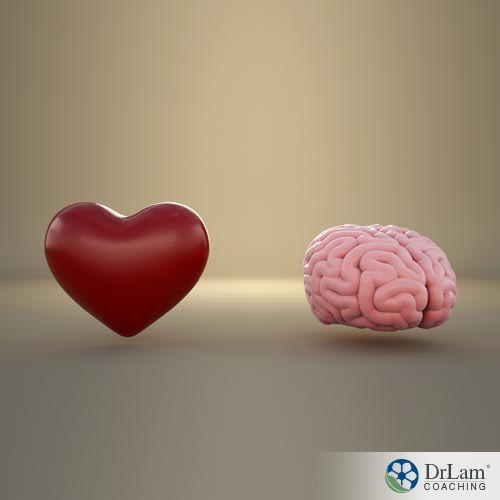 The Heart Brain System – Part 1