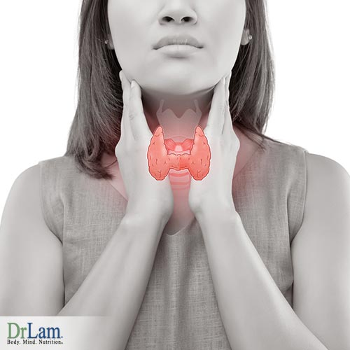 Hormone balancing and natural thyroid regulation