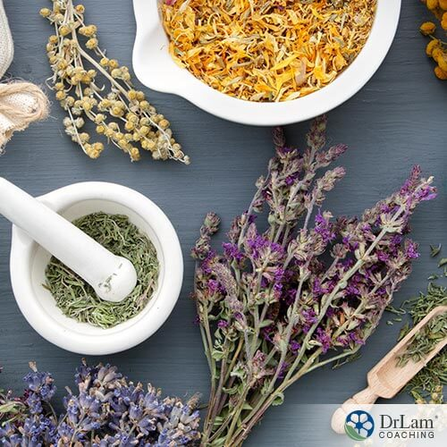 Natural Pain Relief: Homeopathic Remedies and Herbs