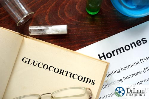 A concept image of Hormone permissiveness and glucocorticoids
