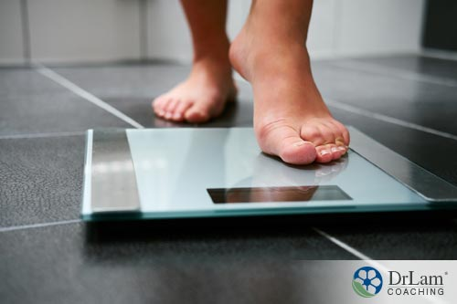 new health tech scales to help track weigh loss goals and progress