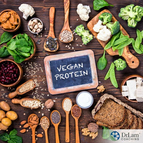 Stay Strong and Healthy with High Protein Vegetarian Food