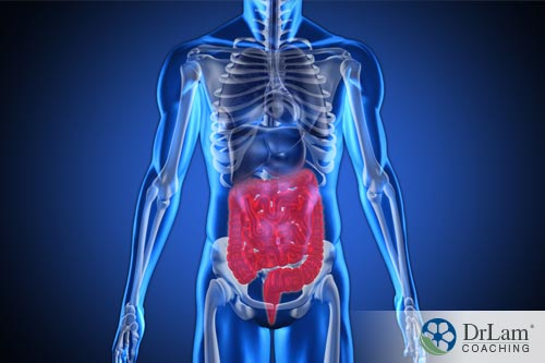 A highlight about chronic constipation and the effect to the body