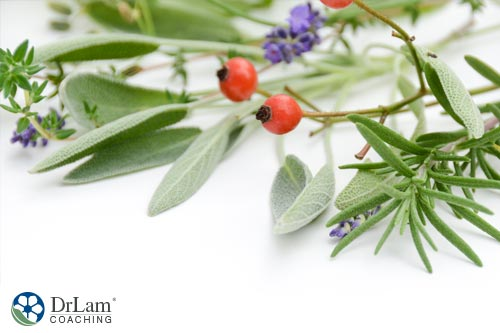 Sprig of Thyme and other herbs that are best sources of Vitamin C