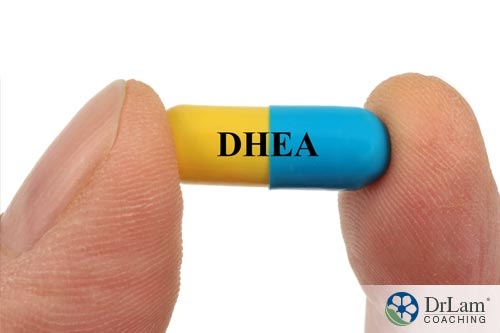 An explination of DHEA and hormones