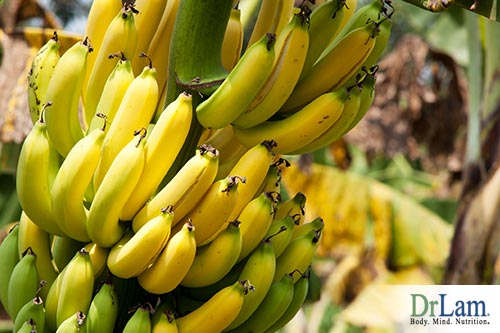 Fats on Fermented bananas