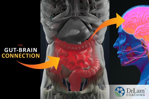 benefits of ketamine on inflammation and the gut brain axis