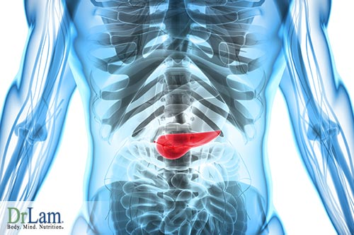 menopausal metabolic syndrome and the pancreas