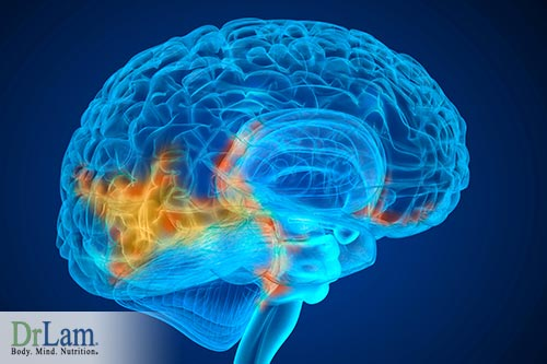 Reduce EMF exposure to minimize brain cancer risk