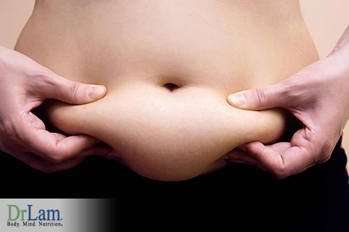 Fertility Hormones and body fat