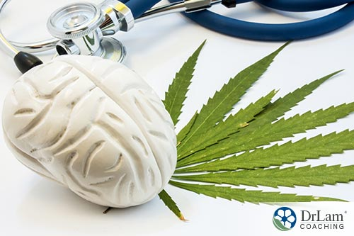 Cannabinoids place in health care