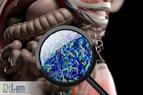 Psychological well being and healthy gut microbiome