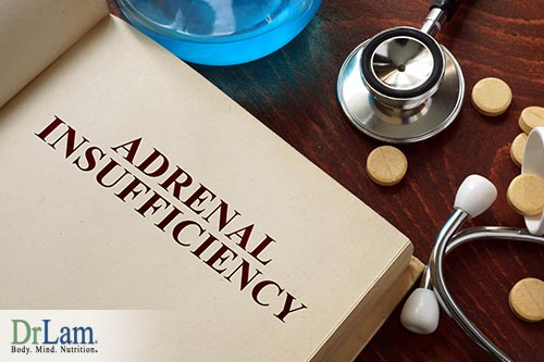 healing adrenal fatigue and improve gut microbiome