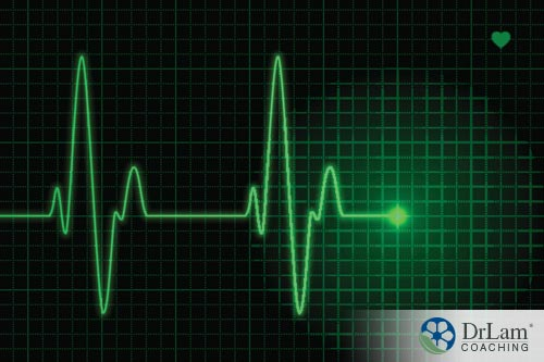 Heart brain system and heart rate