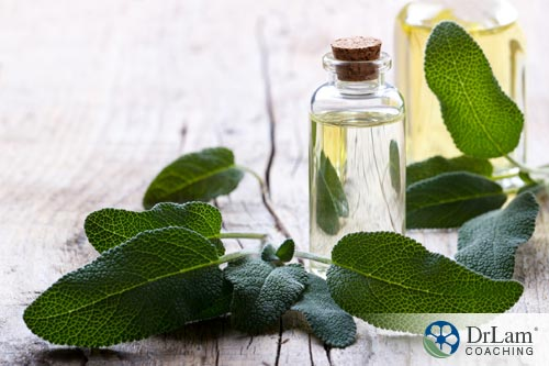 Natural canker sore relief: Sage