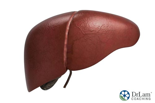 Nitric oxide and liver