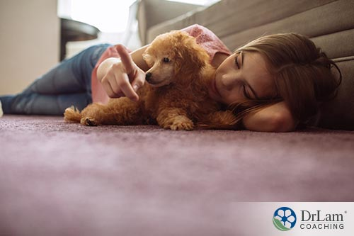 Adrenal fatigue and pets for anxiety