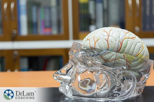 protect your brain with Cognitive health