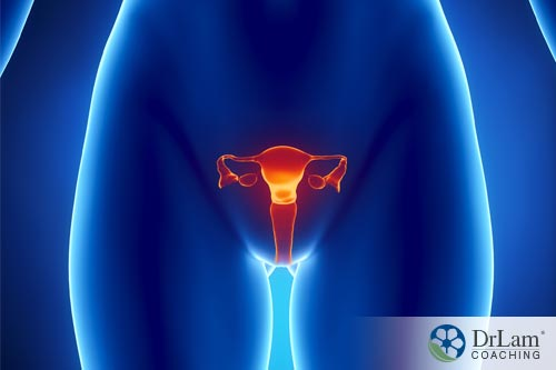 EMF radiation and health conditions of reproductive organs