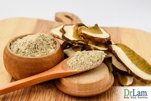 How mushroom extracts can provide Mushroom Health Benefits