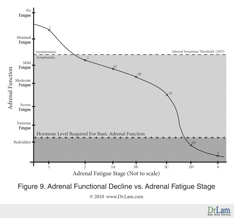 A chart showing the relationship between Adrenal Function and Adrenal Fatigue Stage
