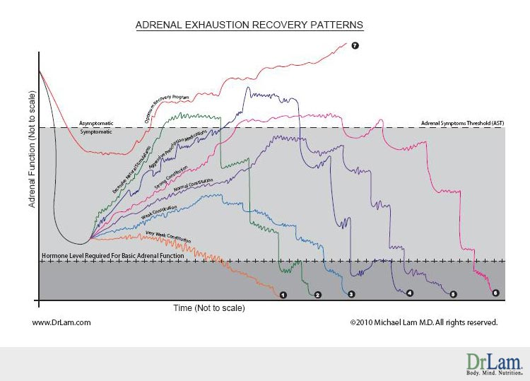Adrenal exhaustion, stage 3c of adrenal fatigue, and their recovery possibilities after a crash