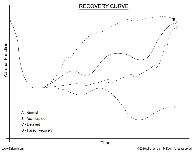 Different adrenal recovery possibilities depending on stage of adrenal fatigue crash