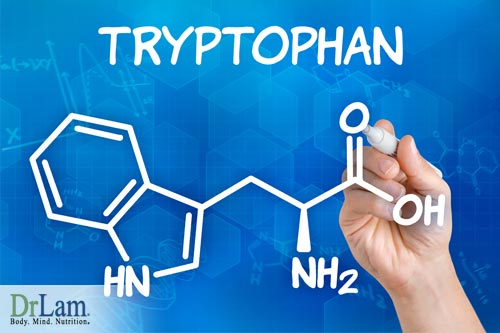 About Niacin and Tryptophan