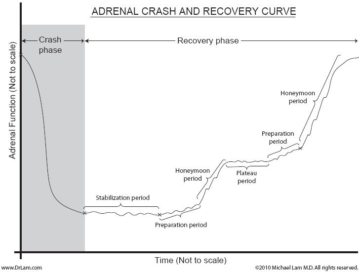 A graph depicting the different phases of an adrenal fatigue crash and recovery.
