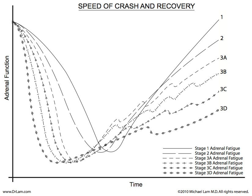 Adrenal function versus time in relation to the speed of recovery after an adrenal fatigue crash.
