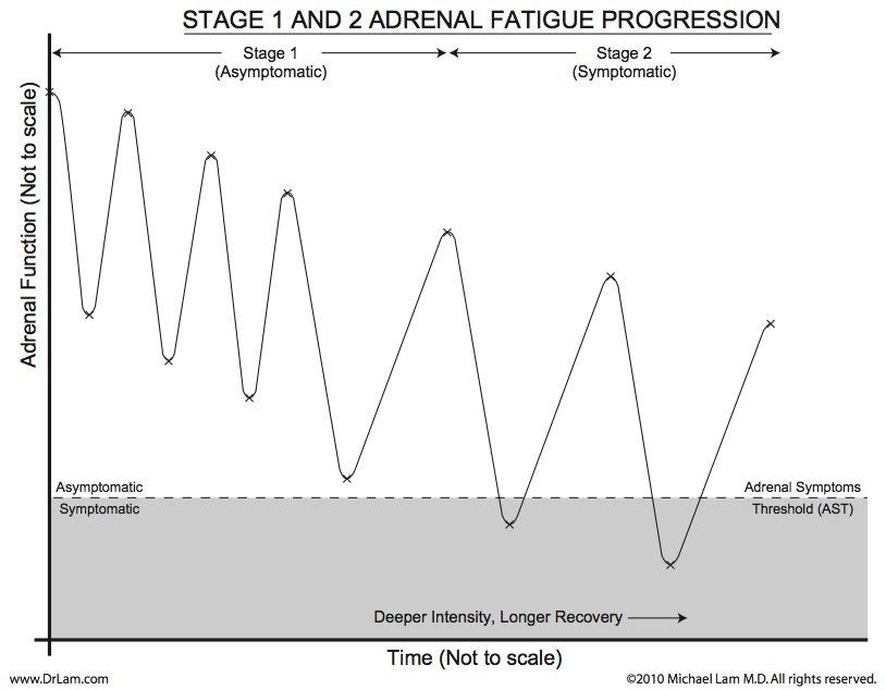 This graph shows the progression of adrenal fatigue crash and recovery during the early stages.
