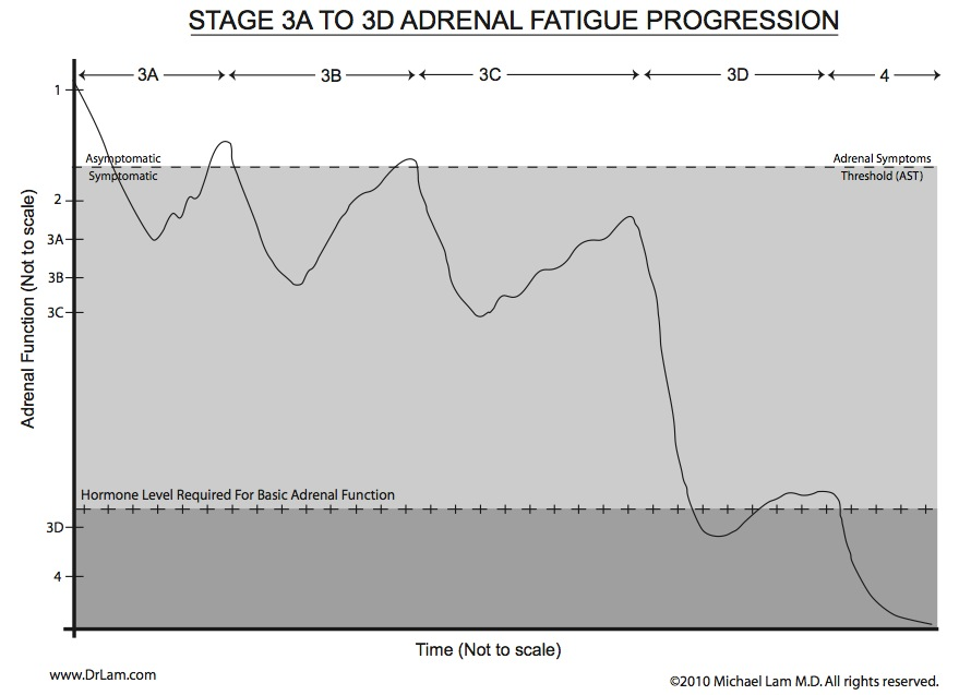 A graph to show the adrenal fatigue crash and recovery cycle in stage 3.