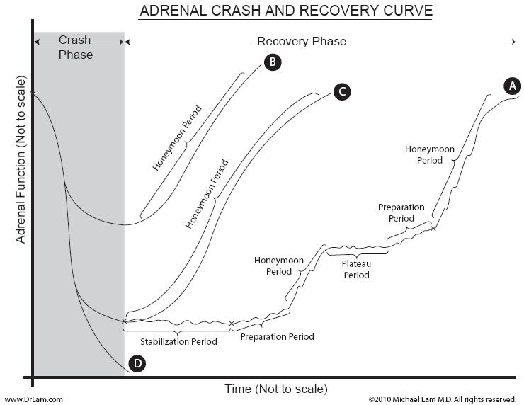 A graph representing an adrenal fatigue crash and inability to recover due to toxic and paradoxical reactions