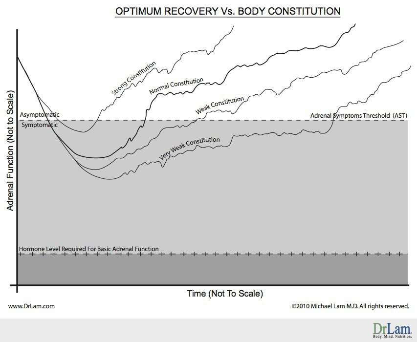 Adrenal Fatigue recovery pattern graph of optimum recovery vs body constitution