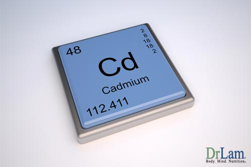 Cadmium exposure damages the telomeres inside the cell, bring on a higher risk of age related diseases and adrenal gland dysfunction