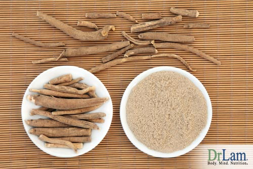 Dried and cut as well as groud ashwagandha laid out in bowls and on a bamboo mat, ready to use for the health benefits of ashwagandha