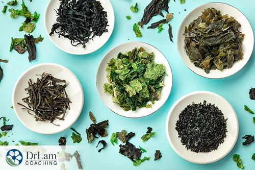 An image of various sea vegetables that promote thyroid function