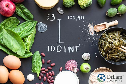 An image shows various iodine food sources
