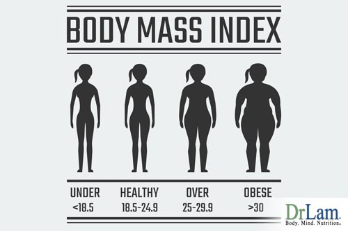 Adult BMI Calculator has Four Ranges