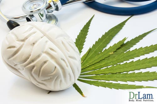 marijuana effects on the brain and the impact over time