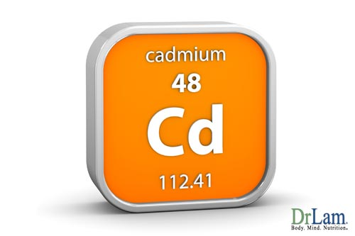 The metal cadmium may worsen the effects of adrenal gland dysfunction