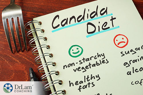 notebook with list of proper diet notes for candida diet