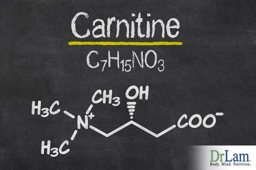What is the difference between carnitine vs acetyl carnitine?