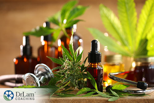 An image of cannabis flower, leaves and oil with a stethoscope