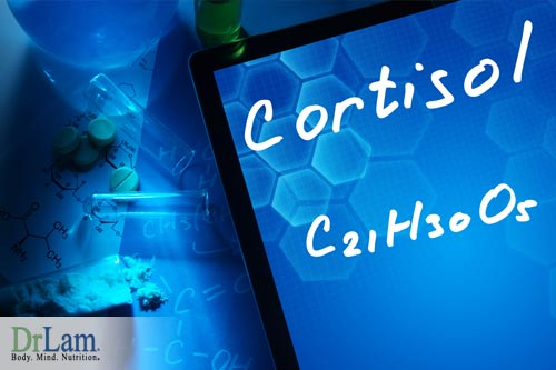 Cortisol, a neurotransmitters function