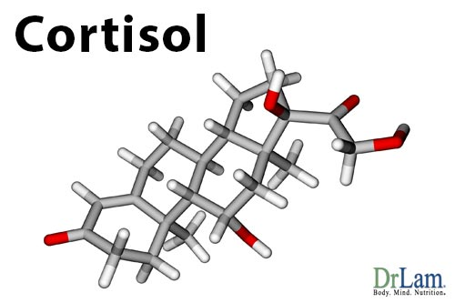 Cortisol steroids facts