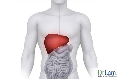 Adrenal Fatigue sufferers might need to detox their liver and increase metabolism naturally