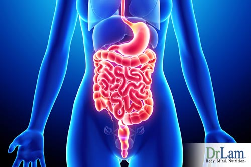 Digestion supplements for Adrenal Fatigue and natural anxiety relief